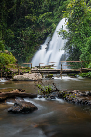 pa: pa dok seaw beautiful waterfall of chaing mai, thailand