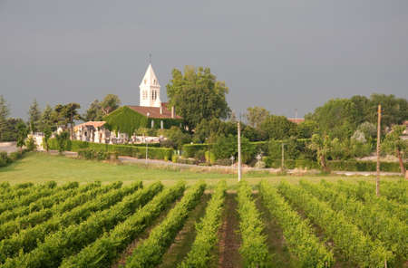 French vineyard and village with church spire against a stormy sky Stock Photo - 9874386