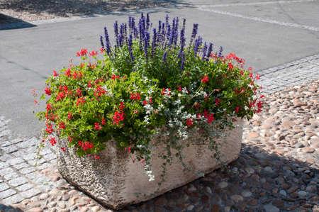 Straat plantenbak vol met bloemen