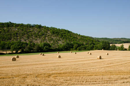 hay bales: Hay bales lying in a French field