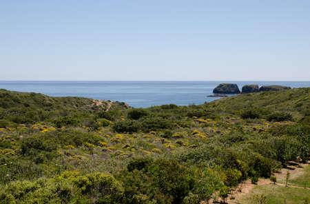 heathland: Heathland and sea in Portugal near Sagres bay