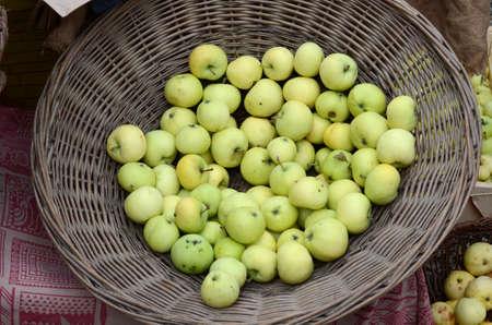 Korb mit frisch gepflückten Äpfeln auf einem Markt Standard-Bild