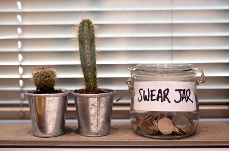 Swear jar on a kitchen window ledge with cactus plants Stock Photo
