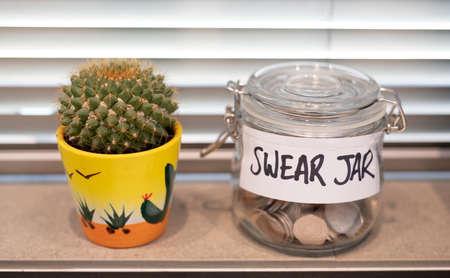 Swear jar positioned on the kitchen window sill Reklamní fotografie