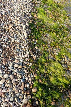 The tide line on a pebble beach in Jersey, Channel Islands