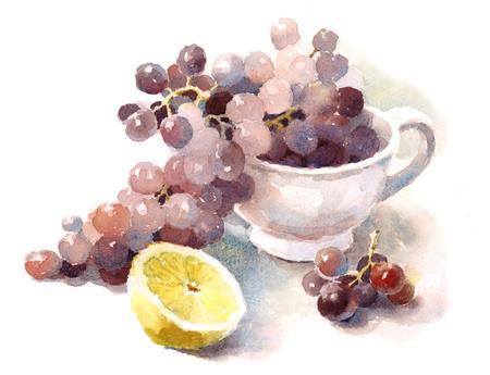Druiven Lemon Fruit aquarel voedsel illustratie hand getrokken