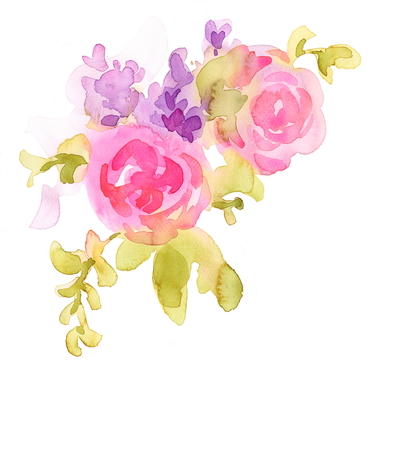 Pink Roses flowers watercolor illustration