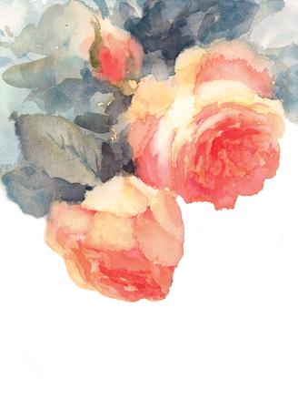 Roze rozen bloemen aquarel illustratie Stockfoto