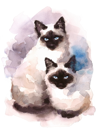 Siamese Cats Watercolor Hand Painted Pet Portrait Illustration