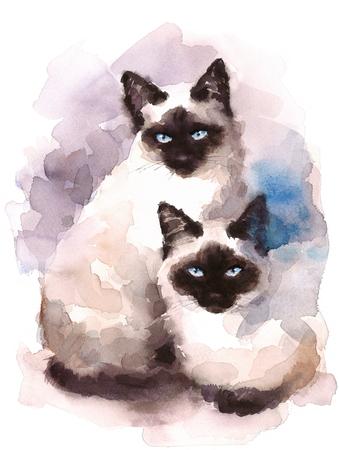 Siamese katten aquarel handgeschilderde huisdier portret illustratie