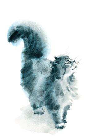 Watercolor Cat Looking Up Hand Drawn Pet Portrait Animal Illustration
