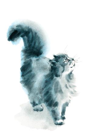 Waterverf Kat Opzoeken Hand Getrokken Dierenportret Dierlijke Illustratie