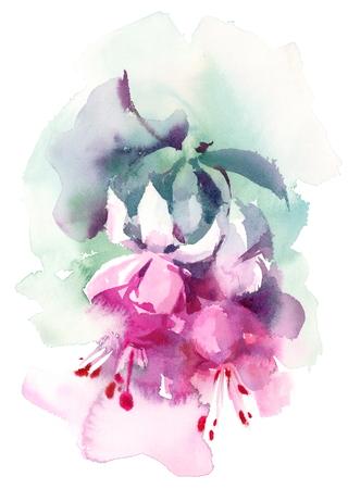 Aquarel Fuchsia Zomerbloemen Handgeschilderde Floral Header Banner Roze Illustratie