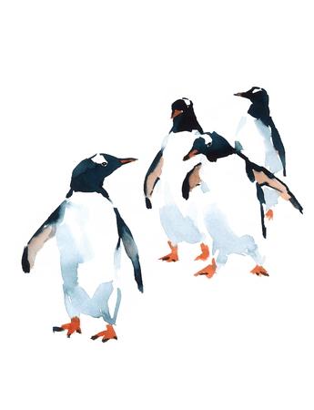 Pinguïns aquarel vogels Antarctische illustratie geïsoleerd op een witte achtergrond