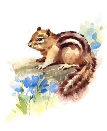 Chipmunk Blue Flowers Watercolor Wild Animal Rodent Hand Drawn Illustration isolated on white background