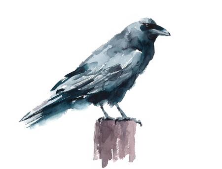 Black Crow Watercolor Raven Bird Standing on the stump Geschilderde afbeelding geïsoleerd op een witte achtergrond