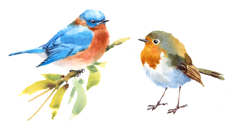 Robin and Bluebird Two Birds Watercolor Hand Painted Illustration Set isolated on white background
