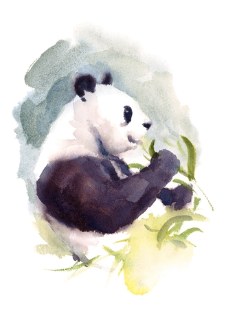 Watercolor Panda Eating Bamboo Leaves Animal Illustration Hand Drawn Wildlife 版權商用圖片