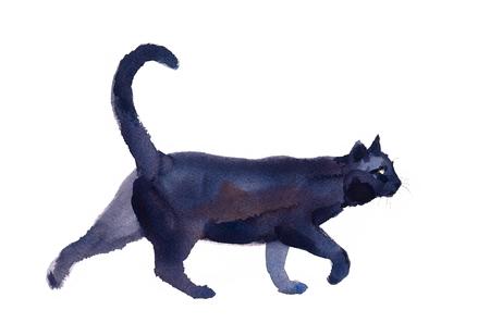 Zwarte kat wandelen aquarel Hand getrokken huisdier portret dierlijke illustratie geïsoleerd op een witte achtergrond Stockfoto