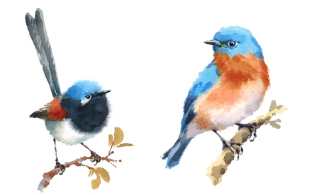 요정 렌 및 블루 버드 두 조류 흰색 배경에 고립 수채화 손으로 그림 세트를 그린 스톡 콘텐츠