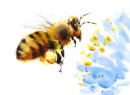 블루 꽃 위에 비행 수채화 꿀벌 꽃 손으로 그린 여름 그림 흰색 배경에 고립 된