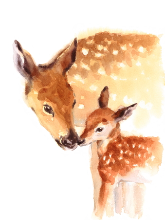 Mother and Baby Deer Watercolor Love Family Hand Painted Mothers Day Summer  Illustration isolated on white background 版權商用圖片