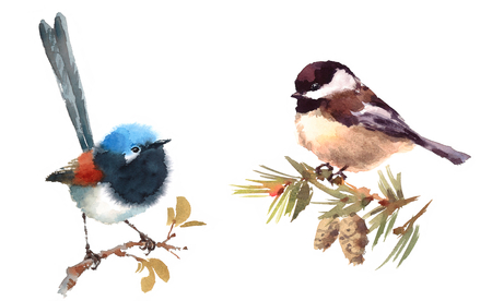 Fairy Wren and Chickadee Two Birds Watercolor Hand Painted Illustration Set isolated on white background