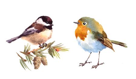 Robin en Chickadee Two Birds Watercolor Hand Painted Illustration Set geïsoleerd op witte achtergrond Stockfoto
