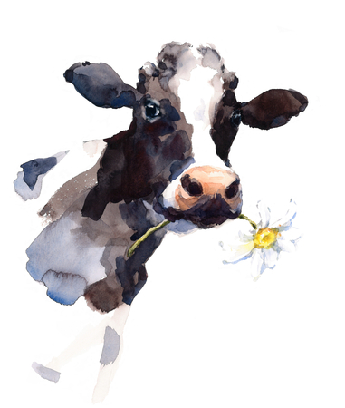 Waterverfkoe met een Daisy Flower in zijn mond Farm Animal Portrait Hand Painted Illustration