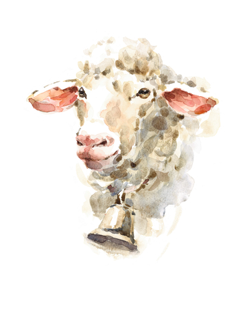 Watercolor Sheep wearing a bell Farm Animal Portrait Hand Painted Illustration