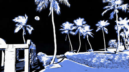 eerie: A eerie landscape of palm trees and the moon in black violet and white