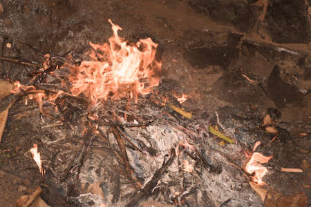 pit fall: Dry leaves burning with red yellow flames in a pit