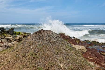 Waves pounding a rock strewn beach
