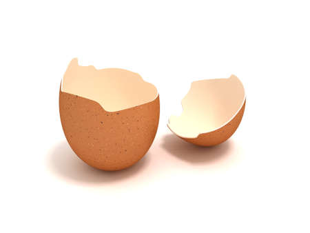broken egg: Cracked eggshell