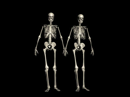 A couple of skeletons walking hand in hand photo