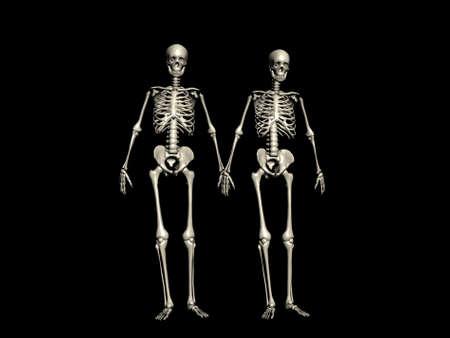 Een paar skeletten lopen hand in hand Stockfoto