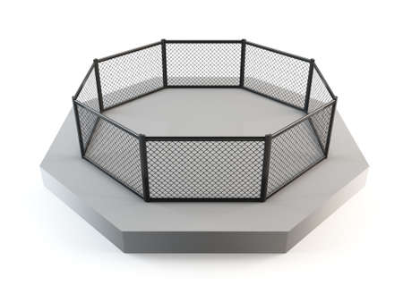octagon: MMA octagon, cage fighting ring