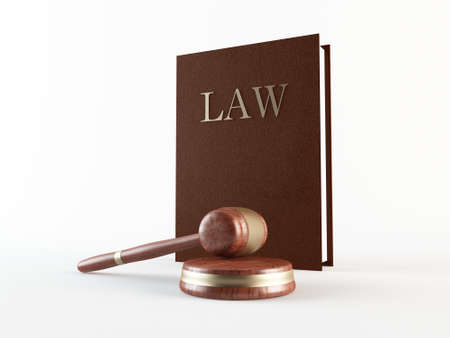 Law book and gavel Stock Photo - 13432123