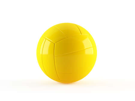 Volleyball Stock Photo - 13432004
