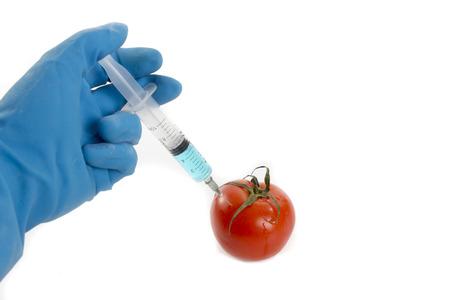 genetically: genetically tomato vaccine
