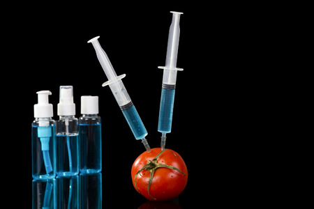 modified: genetically modified vegetables tomato vaccine on black background
