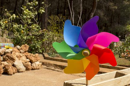 windmill toy, pinwheel in garden outdoors