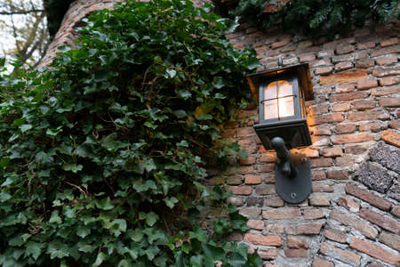 Old lamp on vintage wall. Green leaves around it. Stock Photo