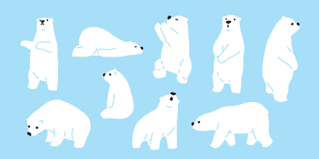 Bear polar bear teddy vector icon character cartoon doodle illustration