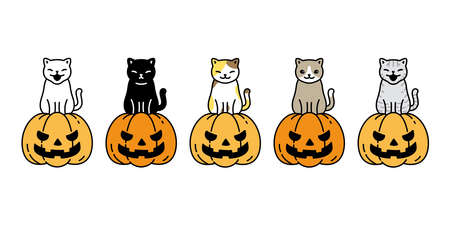 cat vector pumpkin Halloween icon kitten breed calico logo symbol cartoon character illustration ghost doodle design