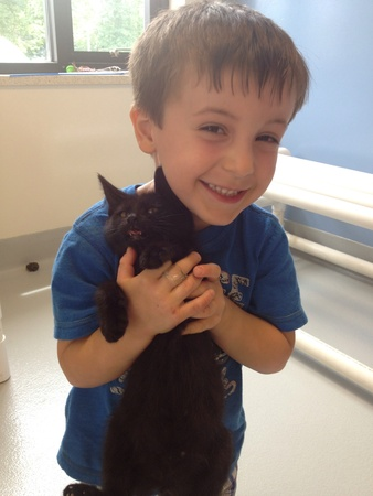 kid with the cat