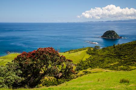 Coastline view from Coromandel Coastal Walkway with blue sky above at Coromandel Peninsula, Northland, New Zealand.