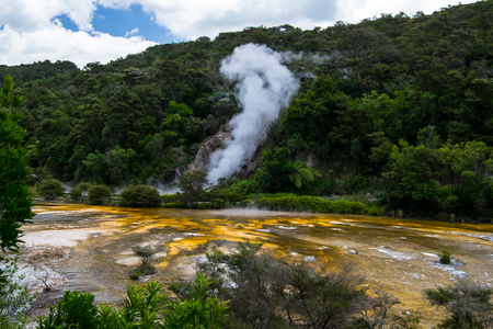 Thermal Geyser at Waimangu Volcanic Valley in Rotorua, North Island, New Zealand.
