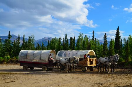 Wells Fargo horse wagons with mountains in the background and cloudy sky above. Healy, Alaska, United States.