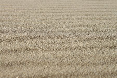 Interesting sand background texture with ripples photo